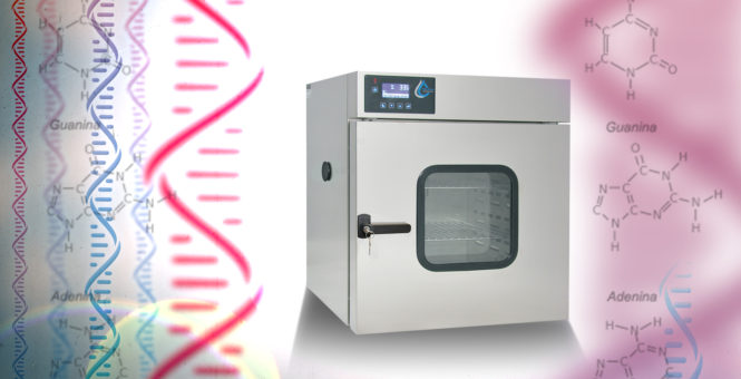 Drying oven in RNA research